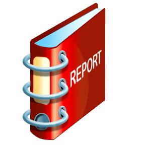 Report written by